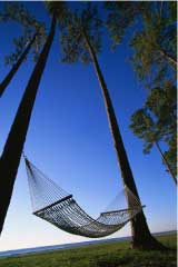 Hammock for relaxing on Charleston SC beach